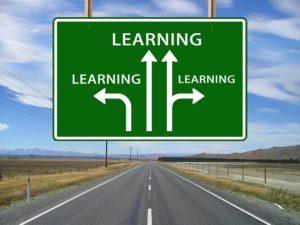 Viele Bildungswege